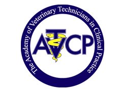 Veterinary Technician Specialties: Clinical Practice
